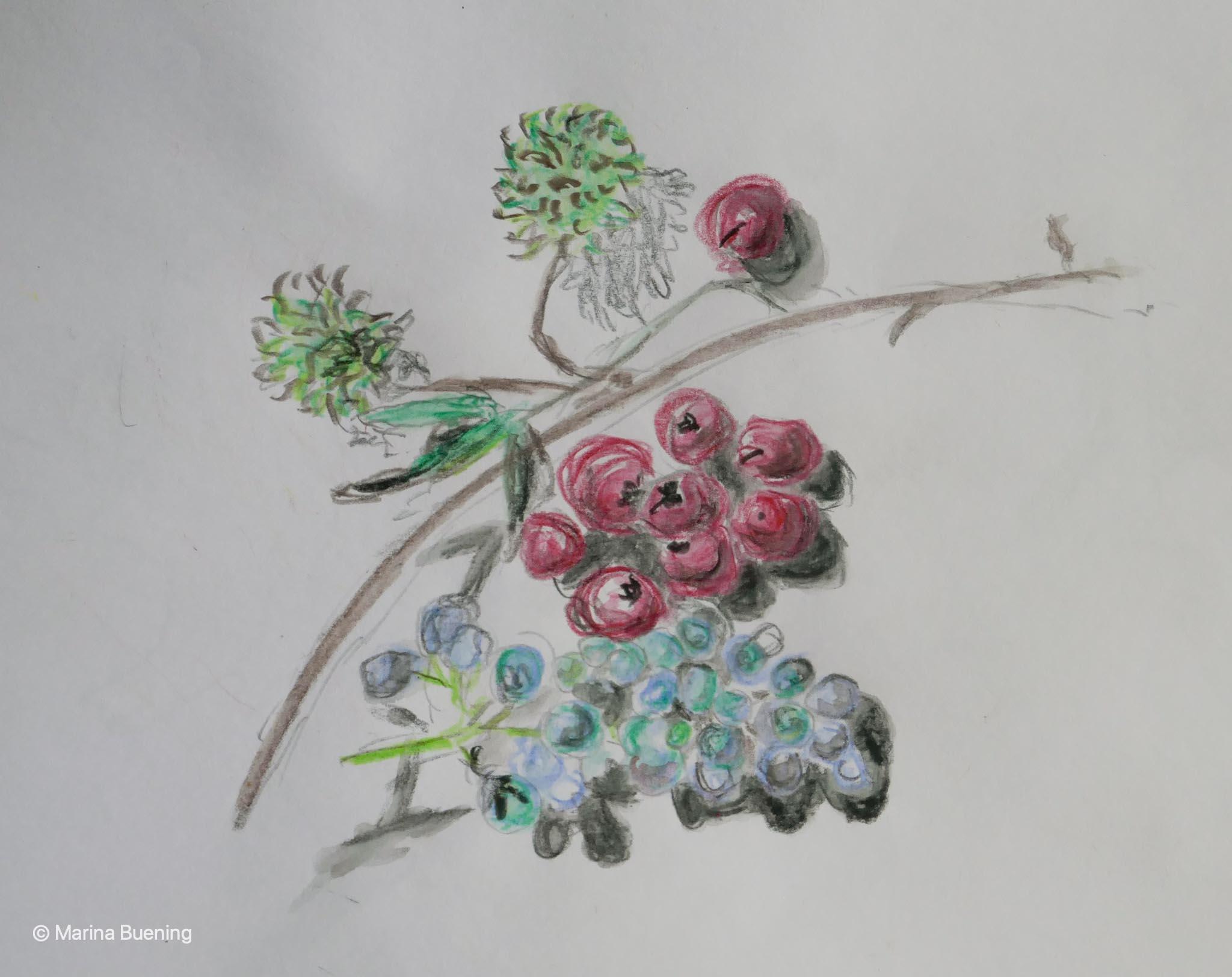 den Frühling zeichnen