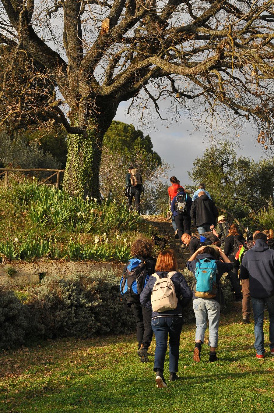 Teilnehmer beim Wandern.